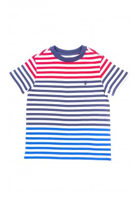 Boys colorful T-shirt, Polo Ralph Lauren